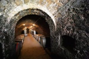 Sremski Karlovci vinski podrum